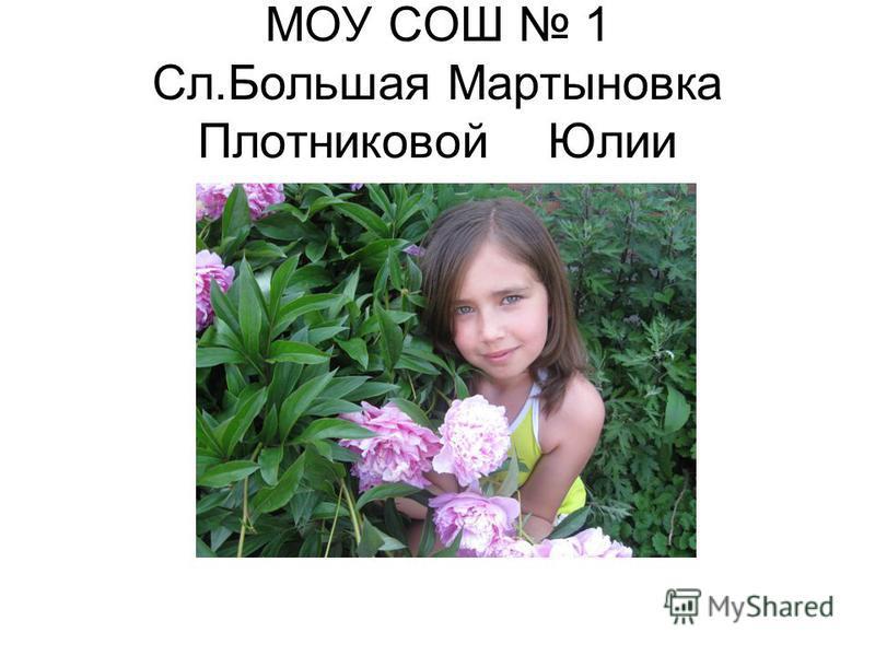 МОУ СОШ 1 Сл.Большая Мартыновка Плотниковой Юлии