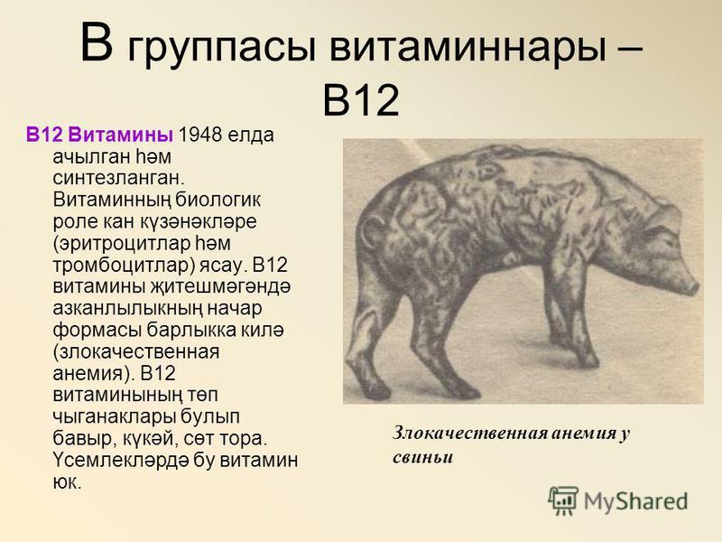 В группасы витаминнаяы – В12 В12 Витамины 1948 елда ачылган һәм синтезланган. Витаминның биологии роле кан күзәнәкләре (эритроцитлар һәм тромбоцитлар) ясау. В12 витамины җитешмәгәндә азканлылыкның анчар форматы барлыкка килә (злокачественная анемия).