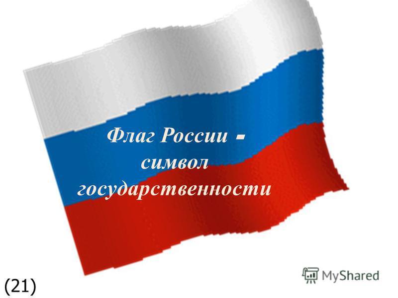 Флаг России - символ государственности (21)