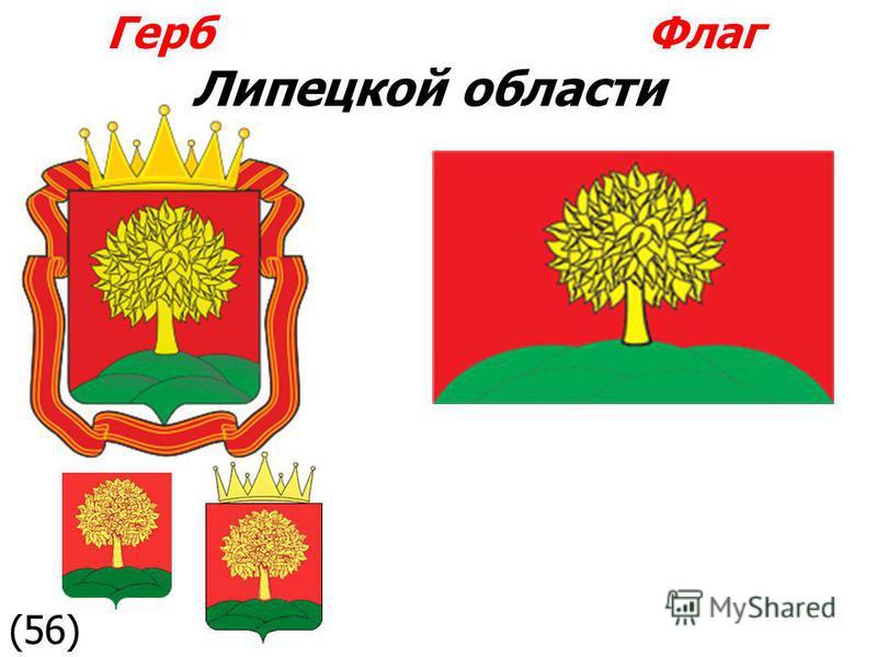 Герб Флаг Липецкой области (56)