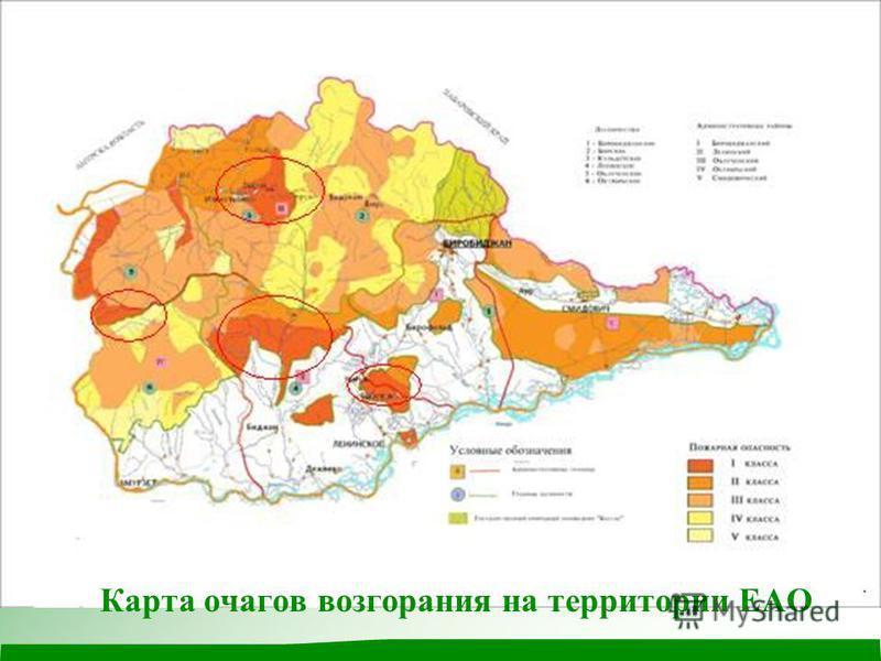 Карта очагов возгорания на территории ЕАО