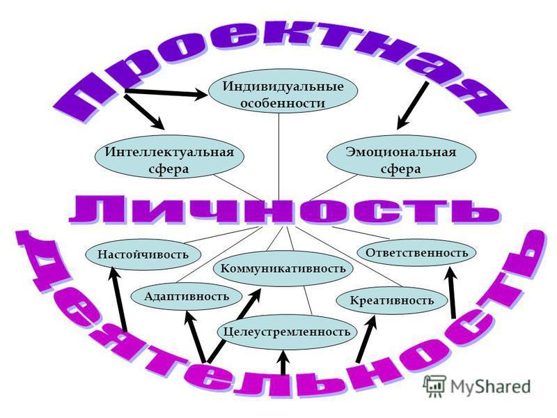 Целеустремленность Настойчивость Ответственность Коммуникативность Адаптивность Креативность Интеллектуальная сфера Эмоциональная сфера Индивидуальные особенности