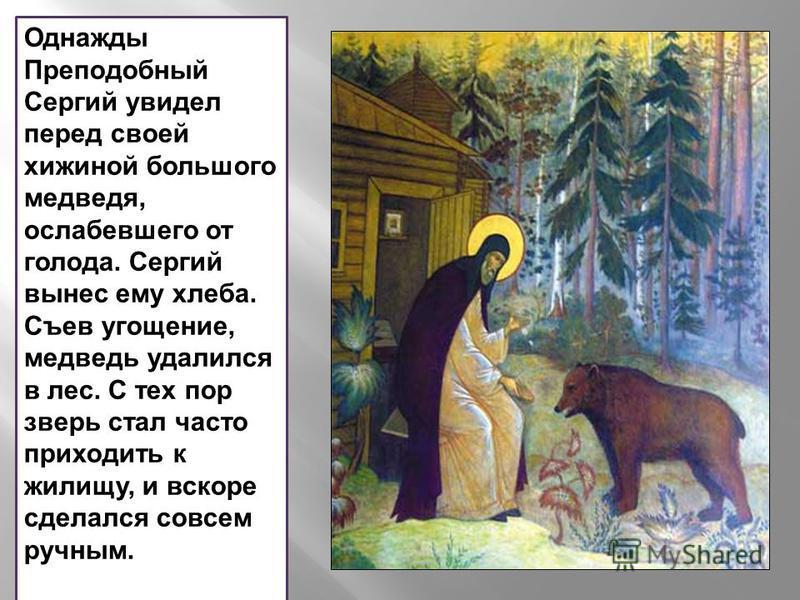 Однажды Преподобный Сергий увидел перед своей хижиной большого медведя, ослабевшего от голода. Сергий вынес ему хлеба. Съев угощение, медведь удалился в лес. С тех пор зверь стал часто приходить к жилищу, и вскоре сделался совсем ручным.