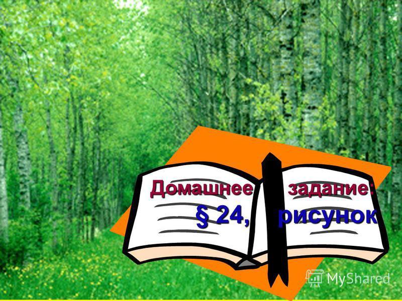 Домашнее задание: Домашнее задание: § 24, рисунок § 24, рисунок