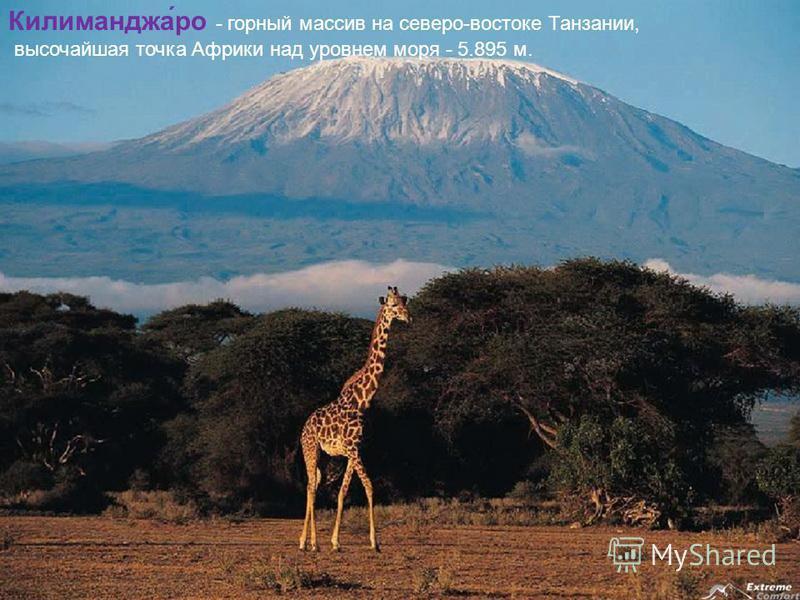 Килиманджа́ро - горный массив на северо-востоке Танзании, высочайшая точка Африки над уровнем моря - 5.895 м.