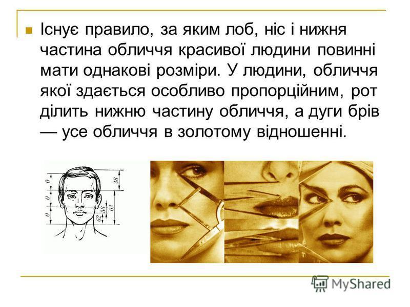 Існує правило, за яким лоб, ніc і нижня частина обличчя красивої людини повинні мати однакові розміри. У людини, обличчя якої здається особливо пропорційним, рот ділить нижню частину обличчя, а дуги брів усе обличчя в золотому відношенні.