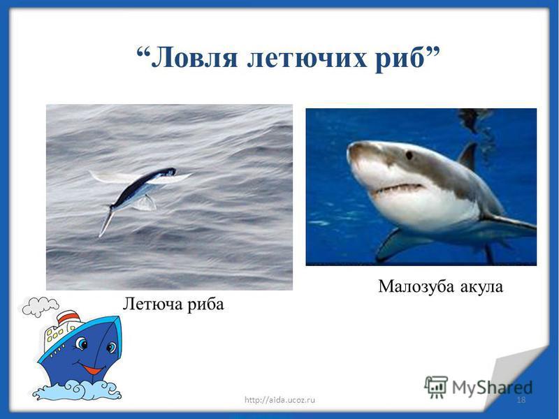 28.07.201518http://aida.ucoz.ru Ловля летючих риб Летюча риба Малозуба акула