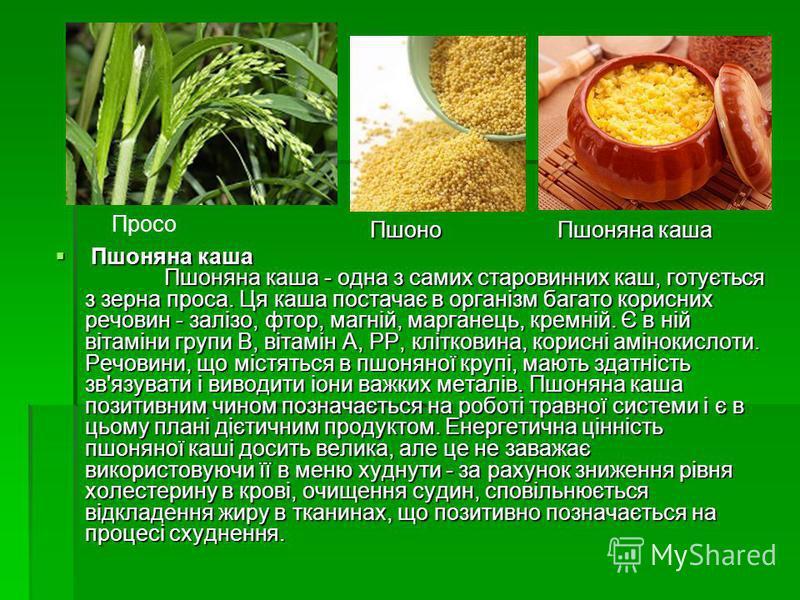 Пшоняна каша Пшоняна каша - одна з самих старовинних каш, готується з зерна проса. Ця каша постачає в організм багато корисних речовин - залізо, фтор, магній, марганець, кремній. Є в ній вітаміни групи B, вітамін А, PP, клітковина, корисні амінокисло