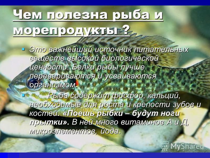 Чем полезна рыба и морепродукты ? Это важнейший источник питательных веществ высокой биологической ценности. Белки рыбы лучше перевариваются и усваиваются организмом. Это важнейший источник питательных веществ высокой биологической ценности. Белки ры
