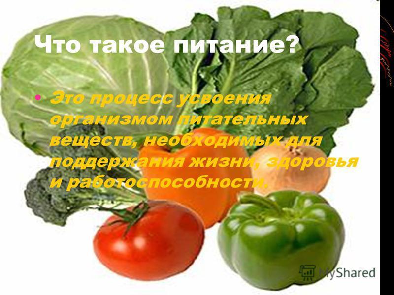 Что такое питание? Это процесс усвоения организмом питательных веществ, необходимых для поддержания жизни, здоровья и работоспособности.