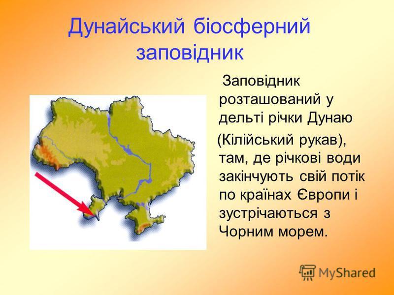 Дунайський біосферний заповідник Заповідник розташований у дельті річки Дунаю (Кілійський рукав), там, де річкові води закінчують свій потік по країнах Європи і зустрічаються з Чорним морем.