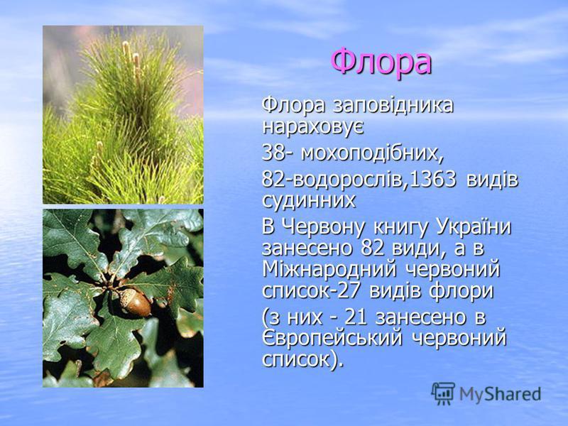 Флора Флора заповідника нараховує Флора заповідника нараховує 38- мохоподібних, 38- мохоподібних, 82-водорослів,1363 видів судинних 82-водорослів,1363 видів судинних В Червону книгу України занесено 82 види, а в Міжнародний червоний список-27 видів ф