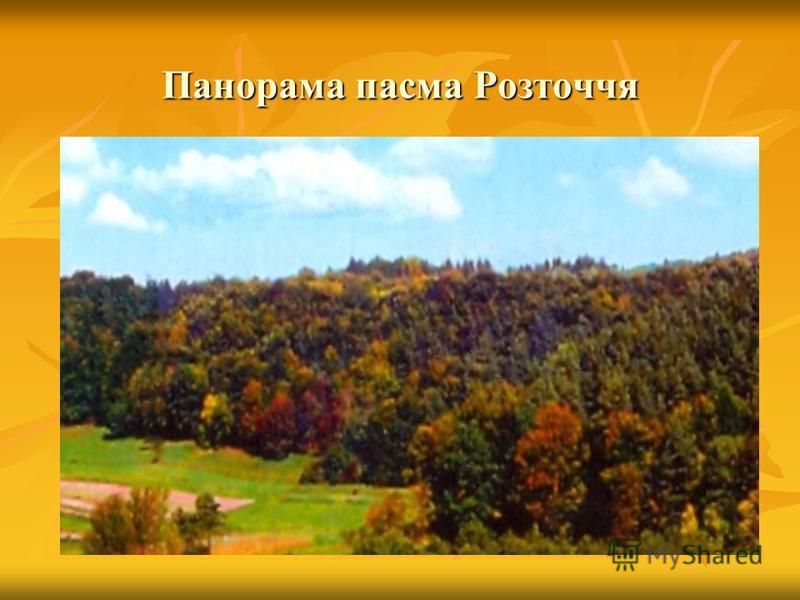Панорама пасма Розточчя