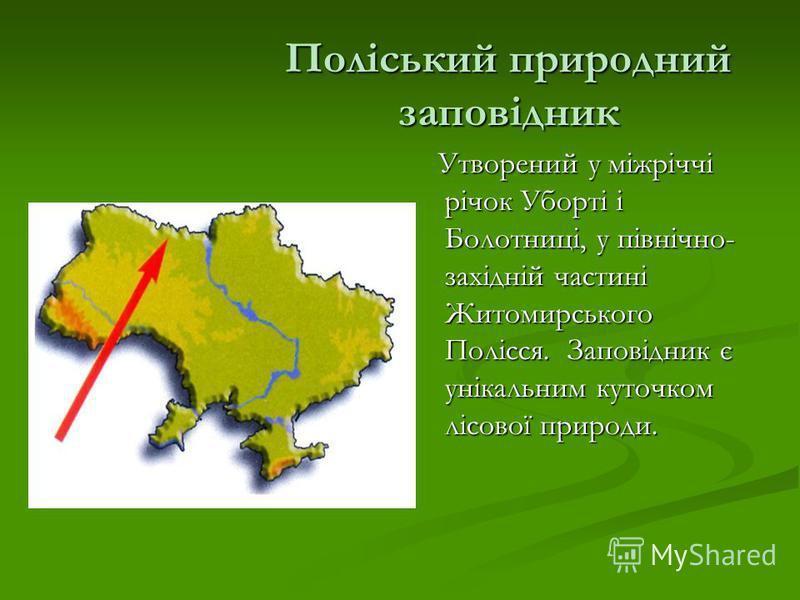 Поліський природний заповідник Утворений у міжріччі річок Уборті і Болотниці, у північно- західній частині Житомирського Полісся. Заповідник є унікальним куточком лісової природи.