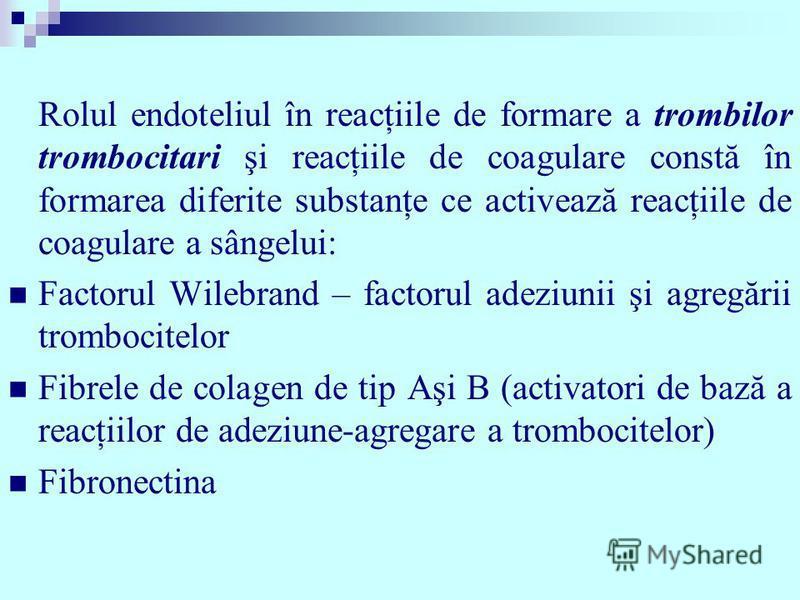 Rolul endoteliul în reacţiile de formare a trombilor trombocitari şi reacţiile de coagulare constă în formarea diferite substanţe ce activează reacţiile de coagulare a sângelui: Factorul Wilebrand – factorul adeziunii şi agregării trombocitelor Fibre