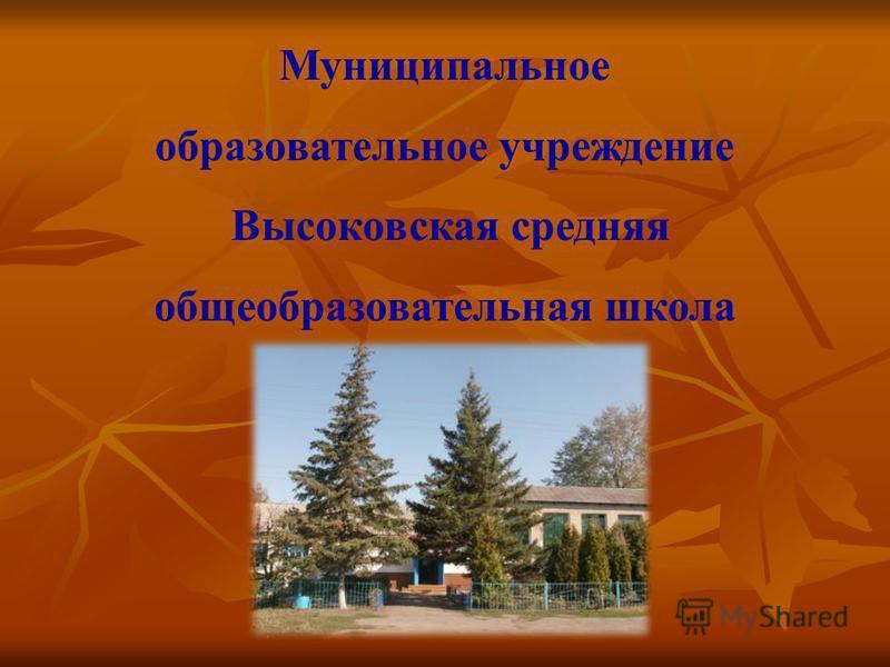 Муниципальное образовательное учреждение Высоковская средняя общеобразовательная школа