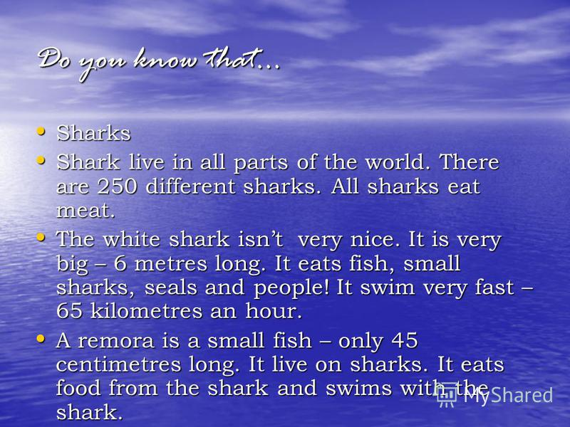 Do you know that… Sharks Sharks Shark live in all parts of the world. There are 250 different sharks. All sharks eat meat. Shark live in all parts of the world. There are 250 different sharks. All sharks eat meat. The white shark isnt very nice. It i