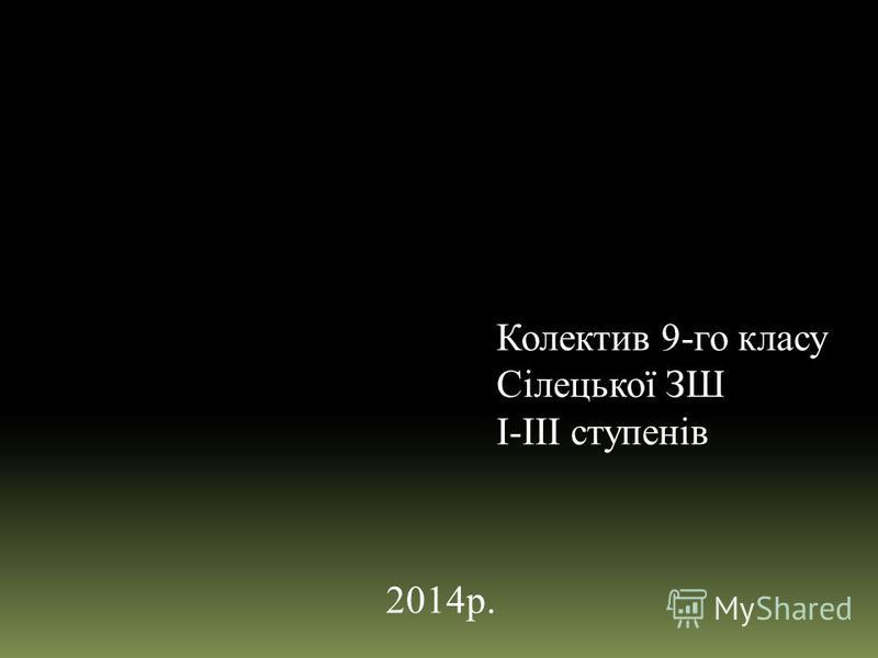 Колектив 9-го класу Сілецької ЗШ І-ІІІ ступенів 2014р.
