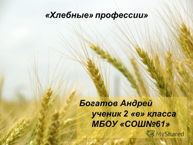 «Хлебные» профессии» Богатов Андрей ученик 2 «е» класса МБОУ «СОШ61»