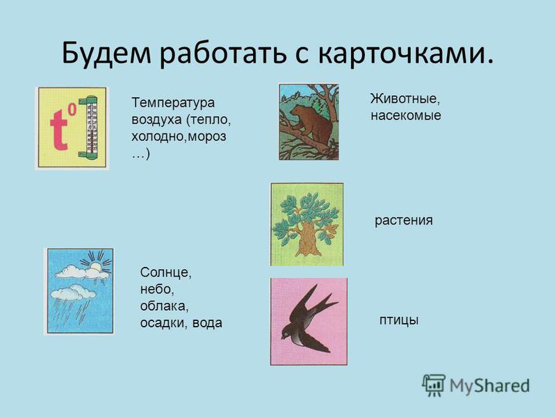 Будем работать с карточками. Температура воздуха (тепло, холодно,мороз …) Солнце, небо, облака, осадки, вода Животные, насекомые растения птицы