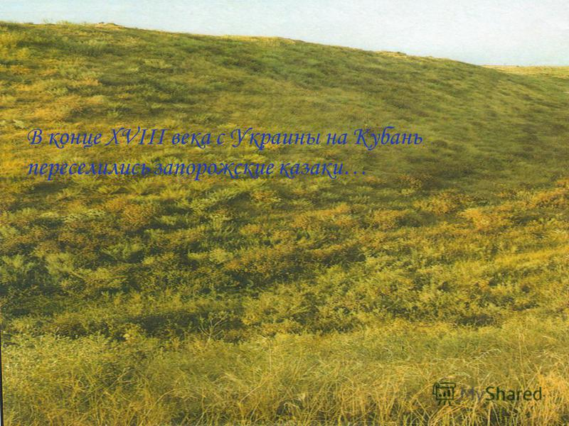 В конце XVIII века с Украины на Кубань переселились запорожские казаки…