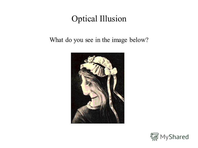 Optical Illusion What do you see in the image below?