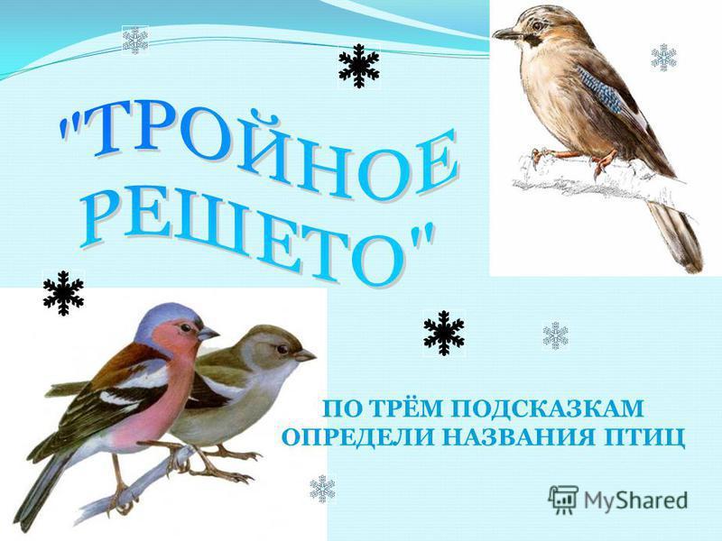 Охраняется Красною книгой Столько редких животных и птиц, Чтобы выжил простор многоликий Ради света грядущих зарниц.