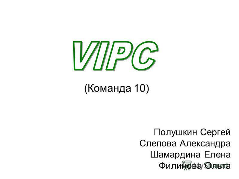Полушкин Сергей Слепова Александра Шамардина Елена Филинова Ольга (Команда 10)