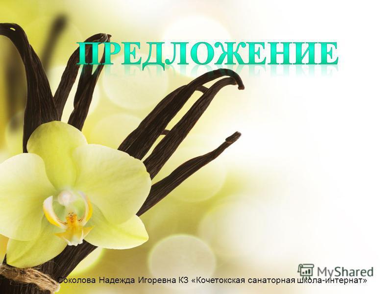 Соколова Надежда Игоревна КЗ «Кочетокская санаторная школа-интернат»
