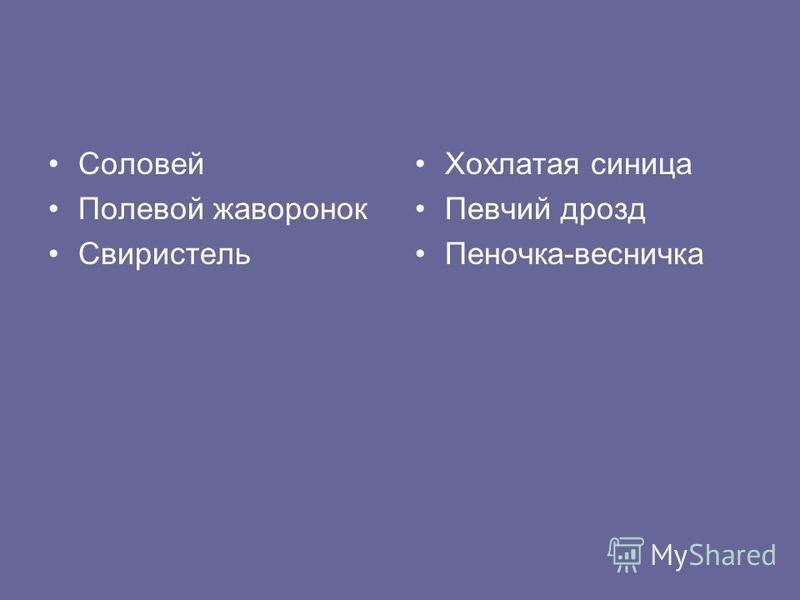 Соловей Полевой жаворонок Свиристель Хохлатая синица Певчий дрозд Пеночка-весничка