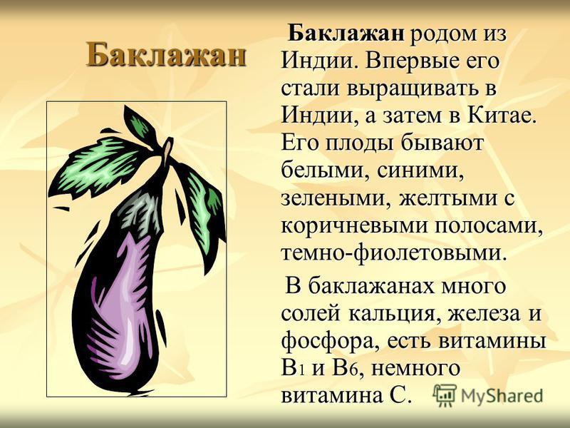Баклажан Баклажан родом из Индии. Впервые его стали выращивать в Индии, а затем в Китае. Его плоды бывают белыми, синими, зелеными, желтыми с коричневыми полосами, темно-фиолетовыми. Баклажан родом из Индии. Впервые его стали выращивать в Индии, а за