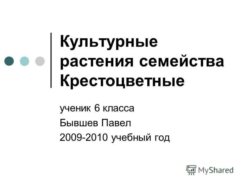 Культурные растения семейства Крестоцветные ученик 6 класса Бывшев Павел 2009-2010 учебный год