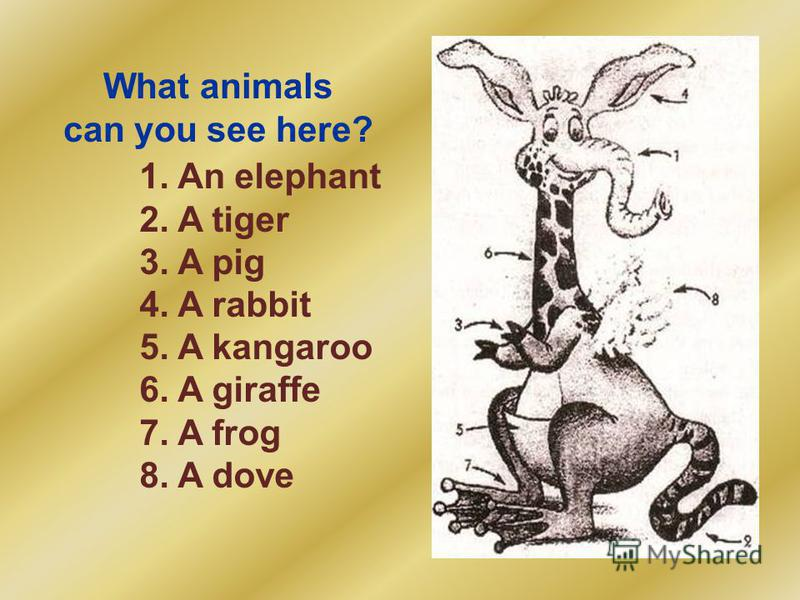 What animals can you see here? 1. An elephant 2. A tiger 3. A pig 4. A rabbit 5. A kangaroo 6. A giraffe 7. A frog 8. A dove