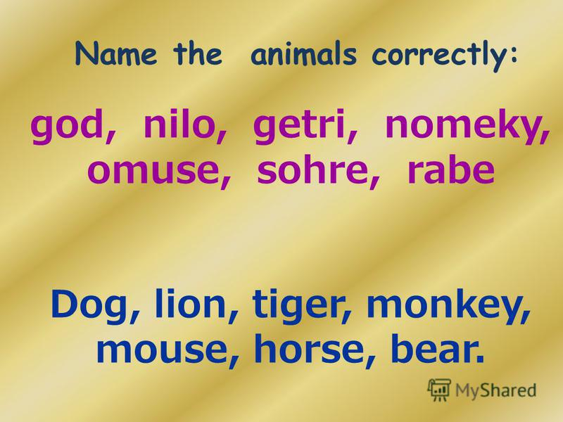 Name the animals correctly: god, nilo, getri, nomeky, omuse, sohre, rabe Dog, lion, tiger, monkey, mouse, horse, bear.