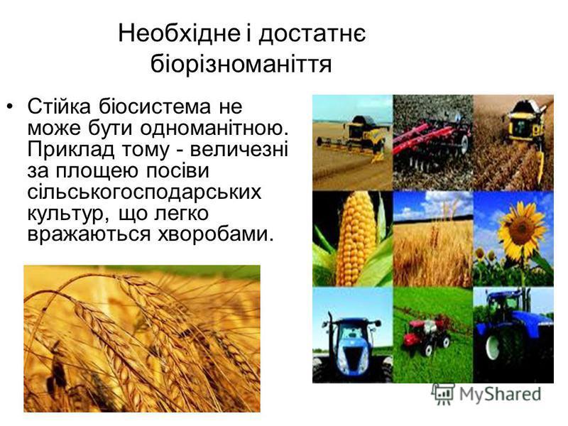 Необхідне і достатнє біорізноманіття Стійка біосистема не може бути одноманітною. Приклад тому - величезні за площею посіви сільськогосподарських культур, що легко вражаються хворобами.
