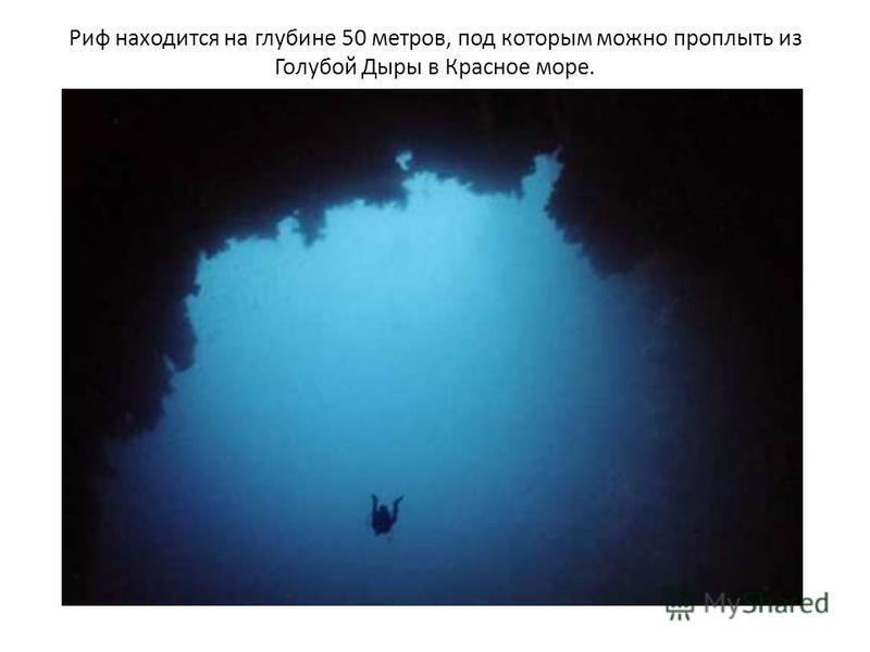 Риф находится на глубине 50 метров, под которым можно проплыть из Голубой Дыры в Красное море.