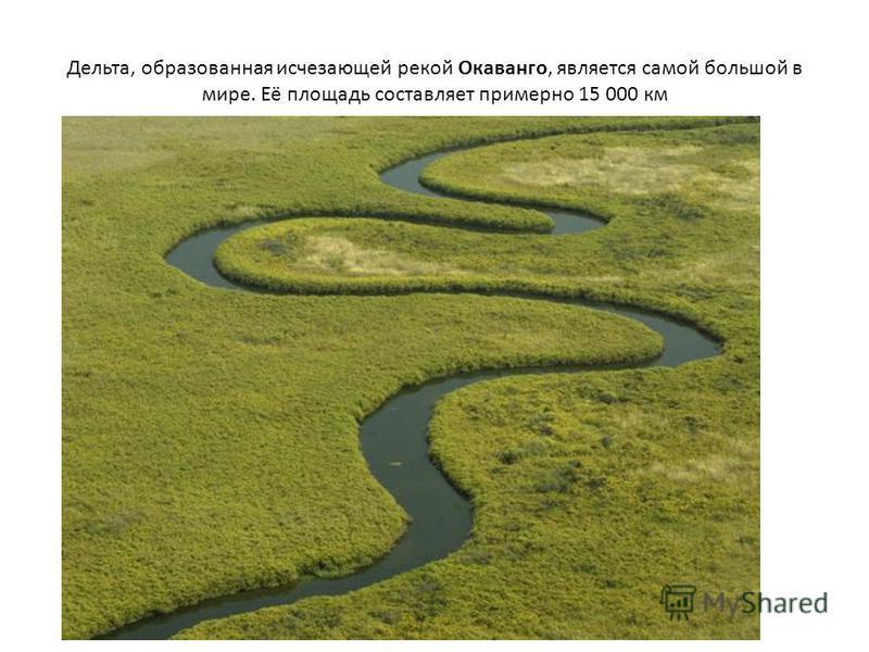 Дельта, образованная исчезающей рекой Окаванго, является самой большой в мире. Её площадь составляет примерно 15 000 км