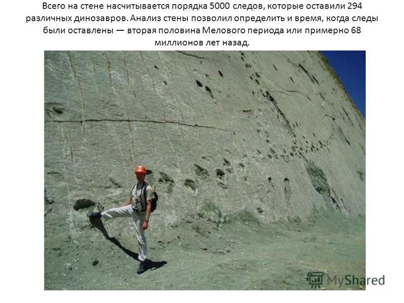 Всего на стене насчитывается порядка 5000 следов, которые оставили 294 различных динозавров. Анализ стены позволил определить и время, когда следы были оставлены вторая половина Мелового периода или примерно 68 миллионов лет назад.
