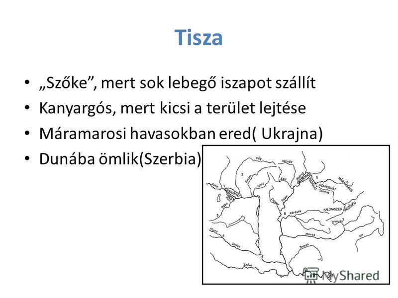 Tisza Szőke, mert sok lebegő iszapot szállít Kanyargós, mert kicsi a terület lejtése Máramarosi havasokban ered( Ukrajna) Dunába ömlik(Szerbia)