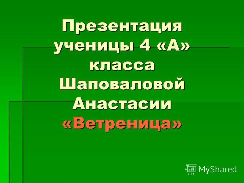 Презентация ученицы 4 «А» класса Шаповаловой Анастасии «Ветреница»