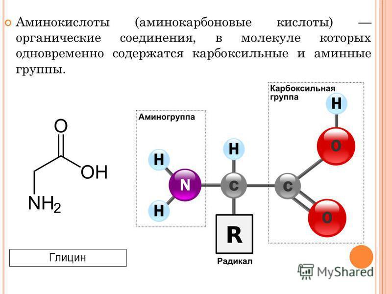 Аминокислоты (аминокарбоновые кислоты) органические соединения, в молекуле которых одновременно содержатся карбоксильные и аминные группы. Глицин