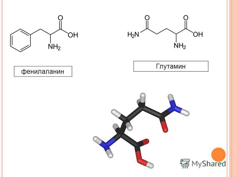 фенилаланин Глутамин