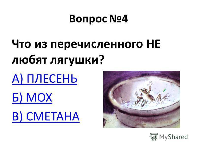 Вопрос 4 Что из перечисленного НЕ любят лягушки? А) ПЛЕСЕНЬ Б) МОХ В) СМЕТАНА