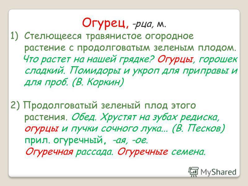 огурей + рей