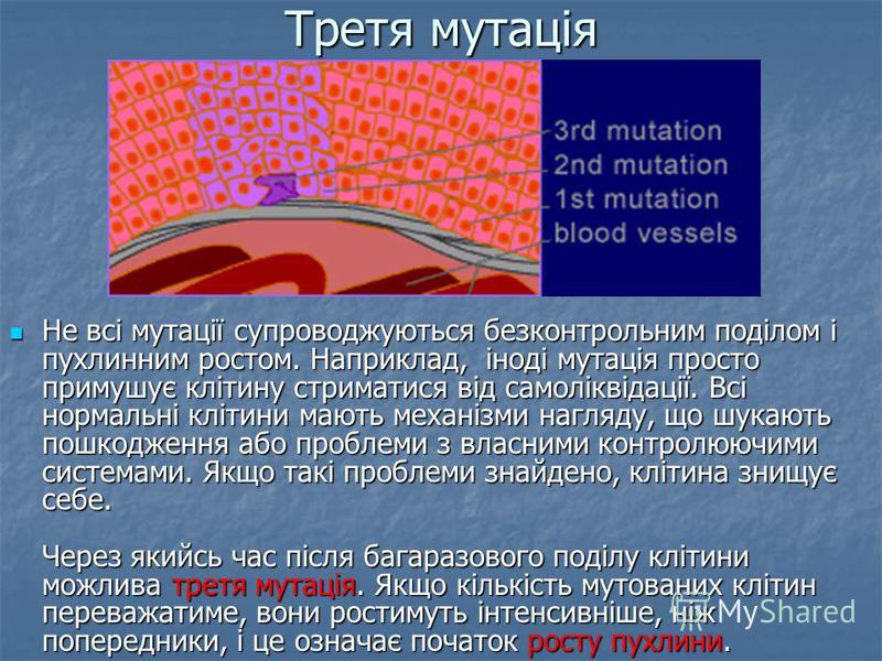 Третя мутація Не всі мутації супроводжуються безконтрольним поділом і пухлинним ростом. Наприклад, іноді мутація просто примушує клітину стриматися від самоліквідації. Всі нормальні клітини мають механізми нагляду, що шукають пошкодження або проблеми
