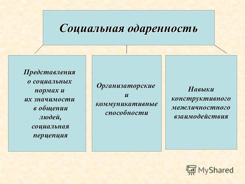 Социальная одаренность Навыки конструктивного межличностного взаимодействия Организаторские и коммуникативные способности Представления о социальных нормах и их значимости в общении людей, социальная перцепция