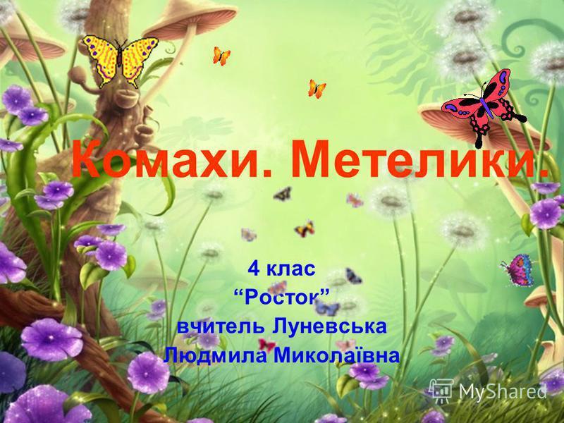 Комахи. Метелики. 4 клас Росток вчитель Луневська Людмила Миколаївна