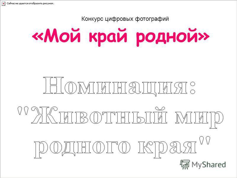 «Мой край родной» Конкурс цифровых фотографий