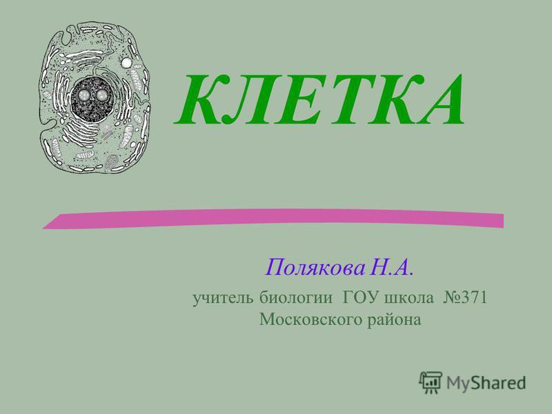 КЛЕТКА Полякова Н.А. учитель биологии ГОУ школа 371 Московского района