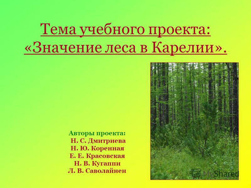 Тема учебного проекта: «Значение леса в Карелии». Авторы проекта: Н. С. Дмитриева Н. Ю. Коренная Е. Е. Красовская Н. В. Кугаппи Л. В. Саволайнен